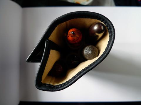 Five-pen case, top view