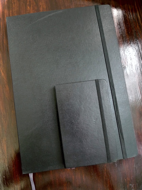 A3 Moleskines