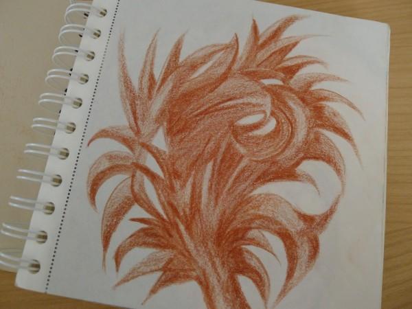 Leafy sketch